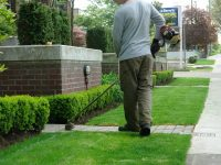 Cordless vs Gas Trimmers