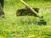 How to Find Weed Eater Parts