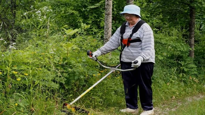 Best Weed Eaters for Women